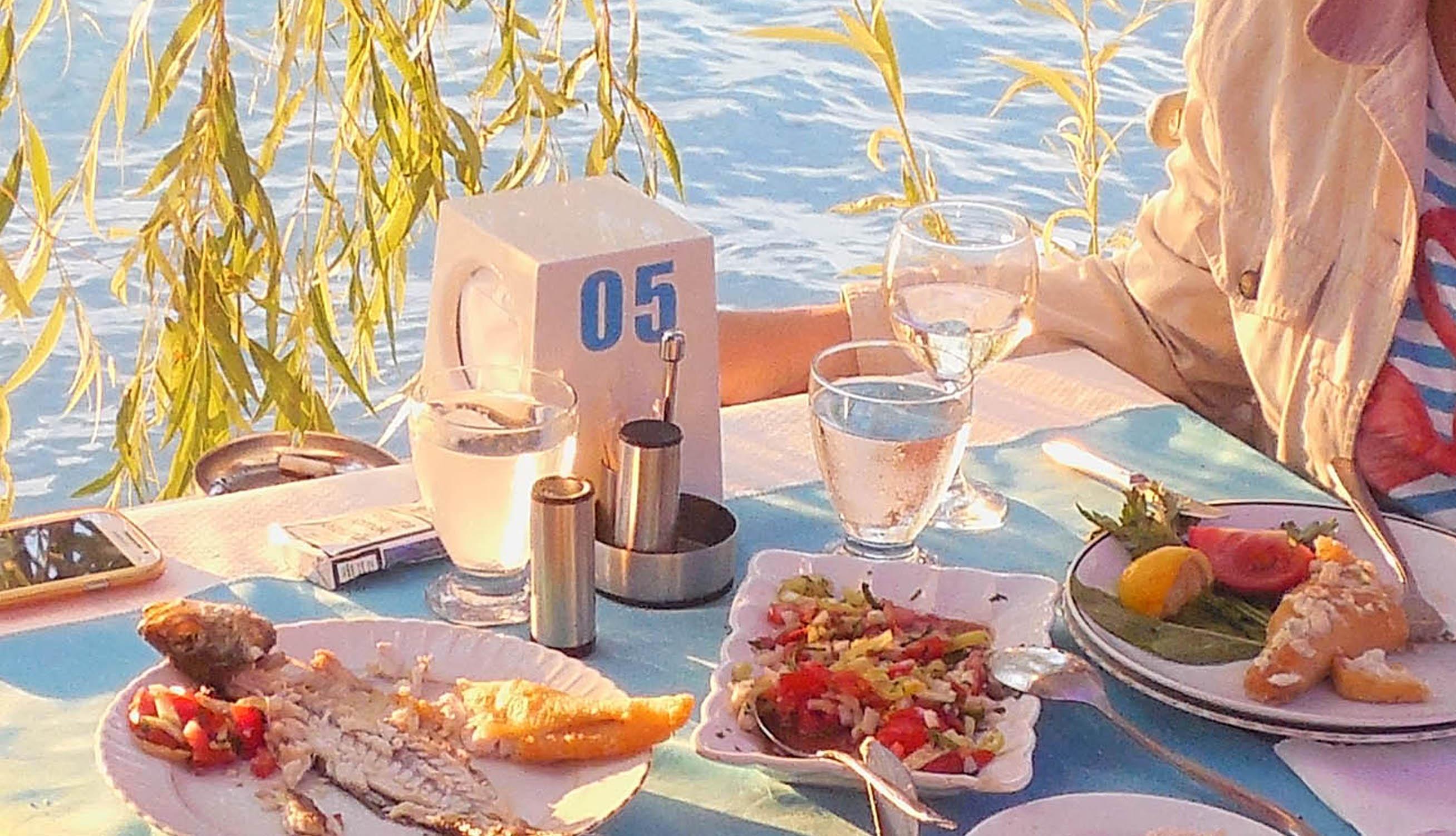 egr-1-fish-rest-3066