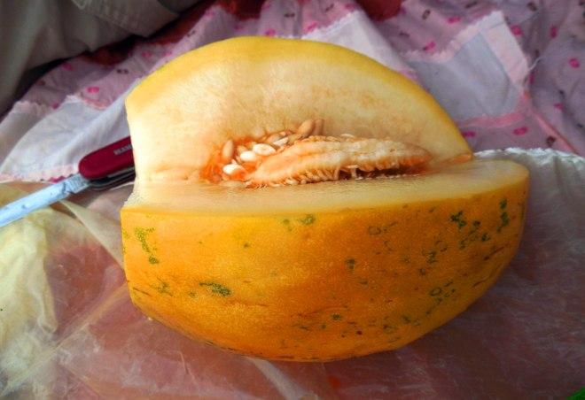 unye-melon-3132